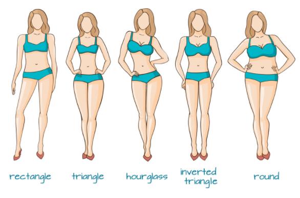 Vase body shape characteristics