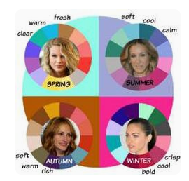 colour season wheel