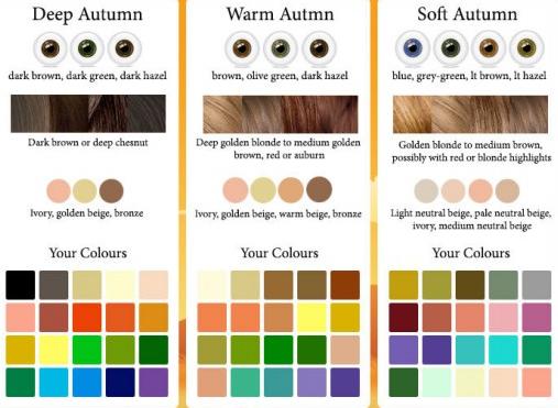 autumn palette.PNG