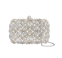 ivory embellished clutch